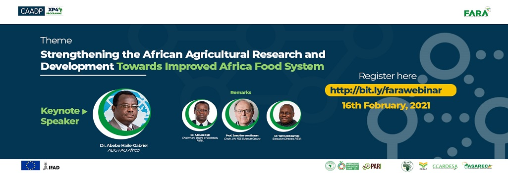 Strengthening the African Agricultural Research and Development Towards Improved Africa Food System